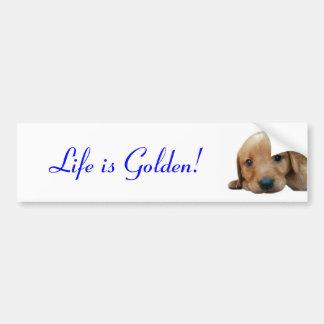 Life is Golden! Bumper Sticker