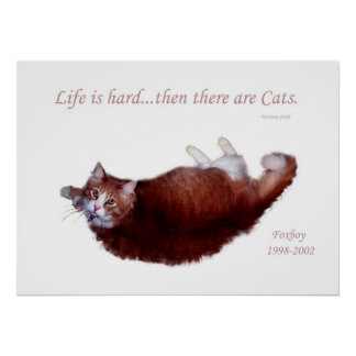Life is hard...then there are Cats. Poster