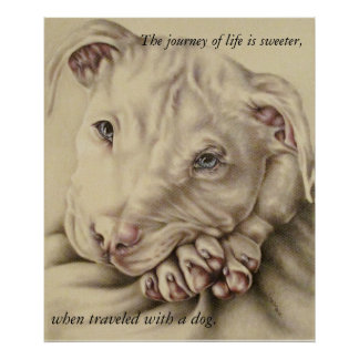 Life is Sweeter with a Dog: Pit Bull Poster