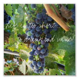 Life is too short...to drink bad wine! poster