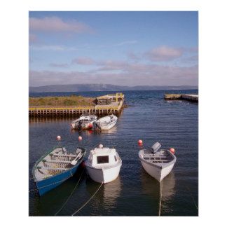 Life Of Boats Canvas Poster