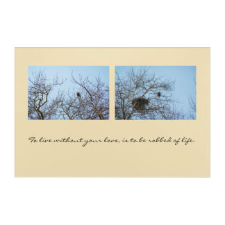 Life Partners Acrylic Print