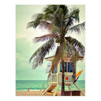 Lifeguard Station  Florida Postcard