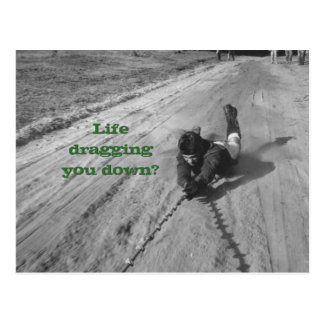 Life's a drag Postcard