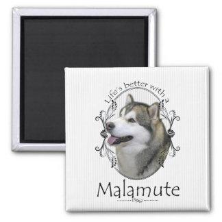 Lifes Better Malamute Square Magnet