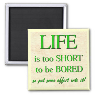 Life's too Short Magnet
