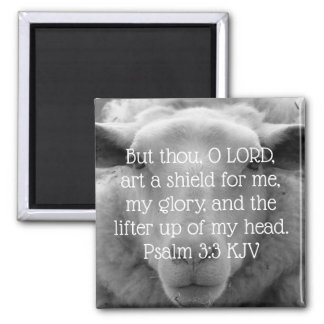 """Lifter up of My Head"" Psalm 3:3 Sheep Background Magnet"