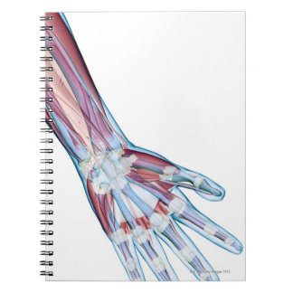 Ligaments in the Hand Spiral Notebook
