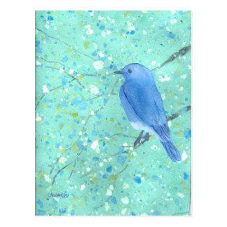 Light and delicate bluebird postcard