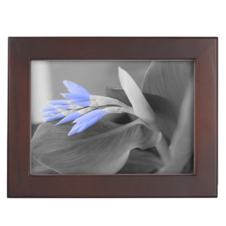 Light Blue Buds selective color Keepsake Box