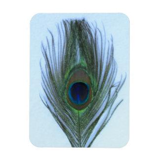 Light Blue Peacock Feather on White Vinyl Magnet