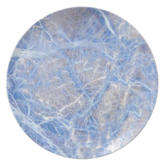 Light Blue Veined Grey Marble Plate