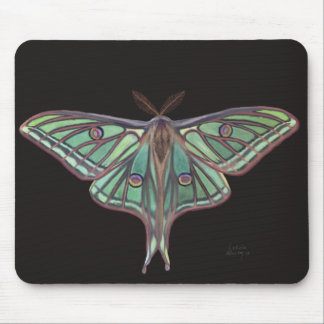 Light Green Spanish Moon Moth Realistic Painting Mouse Pad