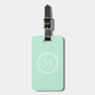 Light Mint Green High End Colored Luggage Tag