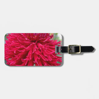Light My Fire Luggage Tag