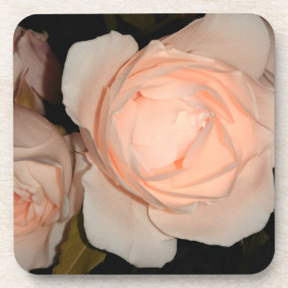 Light Peach Color Rose Coaster