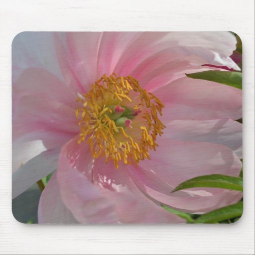 Light Pink Flower Mouse Pad