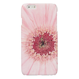 Light Pink Gerbera Daisy Painting