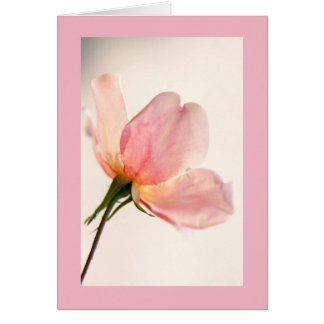 Light pink petals card
