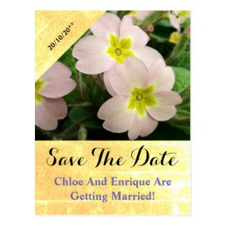 Light Pink Primrose Flowers Custom Wedding Postcard