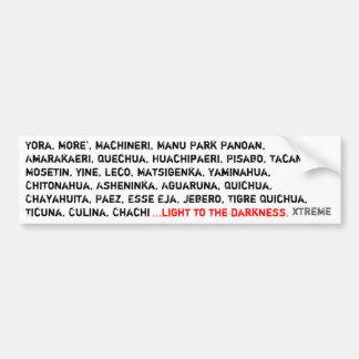 light to the darkness bumper sticker