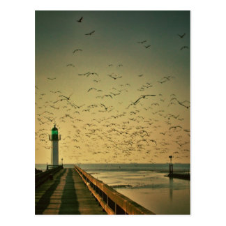Lighthouse and gulls postcard