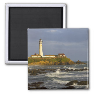 Lighthouse at Pigeon Point State Beach in San 2 Fridge Magnet
