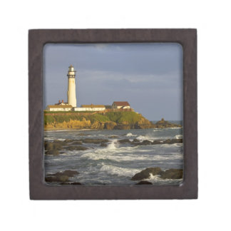 Lighthouse at Pigeon Point State Beach in San 2 Premium Trinket Box
