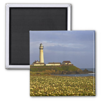 Lighthouse at Pigeon Point State Beach in San Refrigerator Magnet
