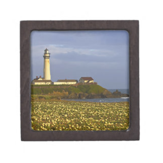 Lighthouse at Pigeon Point State Beach in San Premium Keepsake Box