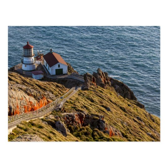 Lighthouse At Point Reyes National Seashore Postcard