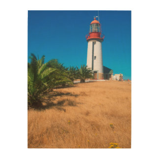 Lighthouse, Robben Island, Cape Town Wood Canvases