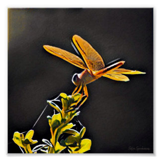 Lightkeeper Dragonfly 7x7 Archival Matte Poster