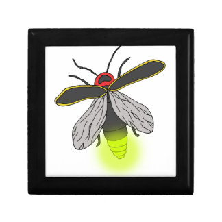 lightning bug flight lit gift box