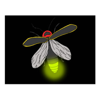 lightning bug flight lit postcard
