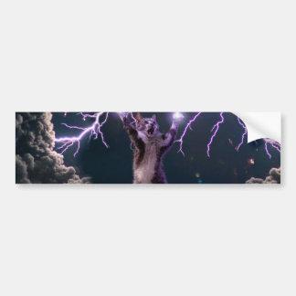 Lightning cat--kitty-pet-feline-pet cat -kittens bumper sticker