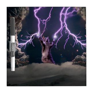 Lightning cat--kitty-pet-feline-pet cat -kittens dry erase board