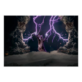 Lightning cat--kitty-pet-feline-pet cat -kittens poster