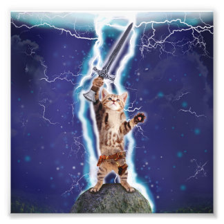 Lightning Cat Photo Print