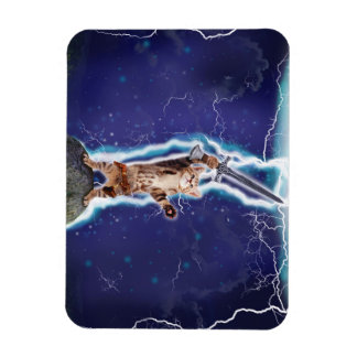 Lightning Cat Rectangular Photo Magnet