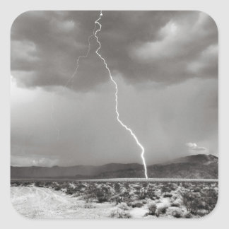 Lightning Joshua Tree B&W Square Sticker