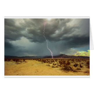 Lightning Joshua Tree Color Card