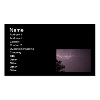 Lightning & Longleaf Pine Double-Sided Standard Business Cards (Pack Of 100)