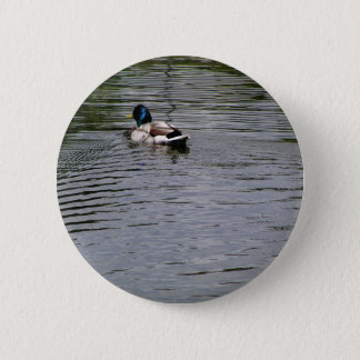 Like a Duck , Be The Duck 2 Inch Round Button
