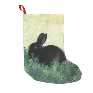 Lil Black Bunny Red Back Small Christmas Stocking
