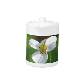Lil White Flower