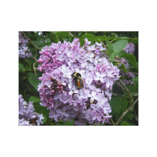 Lilac Blossoms and a Honey Bee Canvas Print