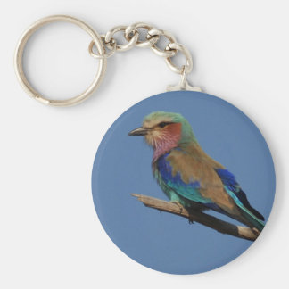 Lilac-Breasted Roller Bird Basic Round Button Keychain