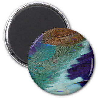 Lilac Breasted Roller feathers 2 Inch Round Magnet