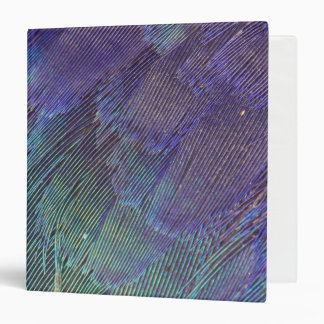 Lilac-breasted Roller feathers 3 Ring Binder